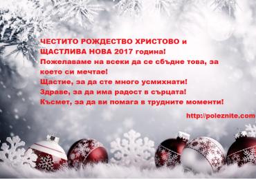 Честито Рождество Христово и щастлива Нова 2017 година!
