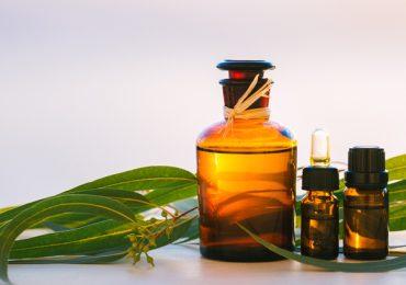Ароматното масло от евкалипт има антивирусен, откашлящ и имуностимулиращ ефект