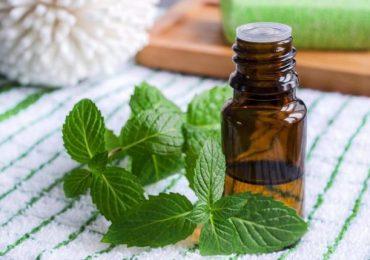 Ароматното масло от пиперлива мента е полезно при стомашни неразположения, гадене и болки в корема