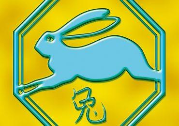 ТИГЪР и ЗАЕК според Китайския хороскоп – предсказания за 2017 г