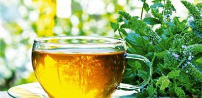 Чубрицата лекува кашлица, главоболие, подобрява храносмилането и още куп болести! Това са рецептите!