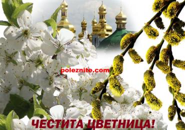 Цветница (Връбница) – най-красивият християнски празник!