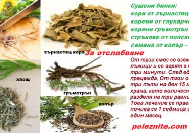 За отслабване и увеличаване на метаболизма използвайте тези билкови рецепти!