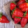 Коя е диетата, която е най-подходяща за вас? Вижте тези три диети и изберете!