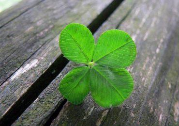 Късметът не съществува ли? А защо на някои хора им върви повече, отколкото на други? Отговорите на тези въпроси – тук!