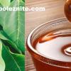 Разширени вени и увредени капиляри – билки и природни средства за лечение – рецепти и съвети