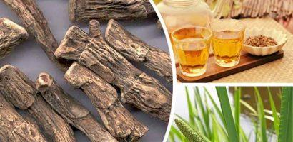 Блатен аир или миризлив и тръстиков акорус – къде се намира и как се използва за лечение на стомаха, при бронхит и още…