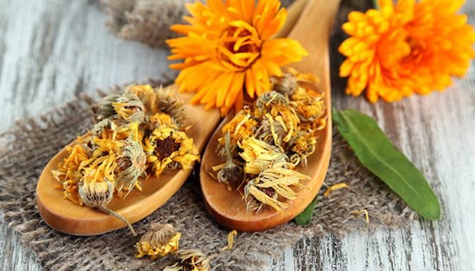 Херпес – изпробвани рецепти за лечение с билки вътрешно и външно