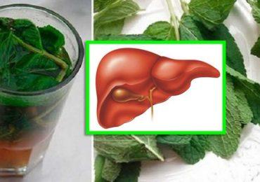 Черния дроб – как да се грижим за него – това са съвети за правилно хранене, рецепти с билки и още…