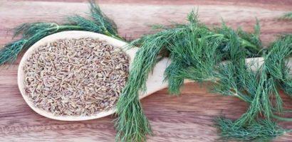 Проблеми с апетита, подут корем и газове, безсъние, гъбички – това са билкови рецепти за тези неразположения
