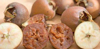 Мушмулата – какви са полезните й качества и рецепта за мармалад