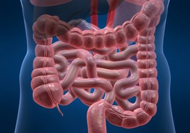 Тези симптоми алармират за сериозни проблеми с червата