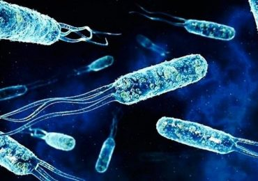 Учени алармират: Нелечима бактерия плъзна из света