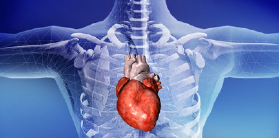Проф. д-р Игор Жиров разкри кои са най-опасните продукти за сърцето