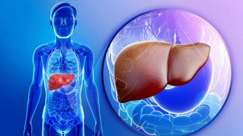 Тези симптоми алармират за претоварен черен дроб