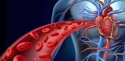 Натурален лек за хипертония, затлъстяване и замърсени кръвоносни съдове