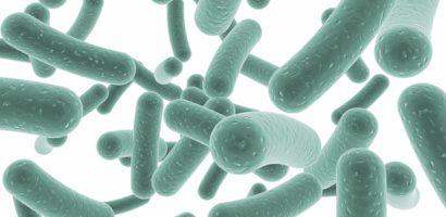 Ето защо е препоръчително да приемате пробиотици